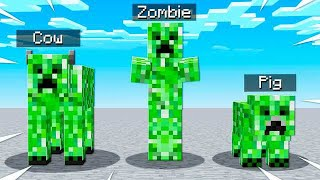 IF ALL MOBS WERE CREEPERS IN MINECRAFT...