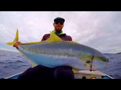BIG FISH In A Tiny Boat