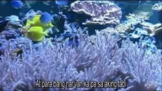 tagalog love song paminsan minsan
