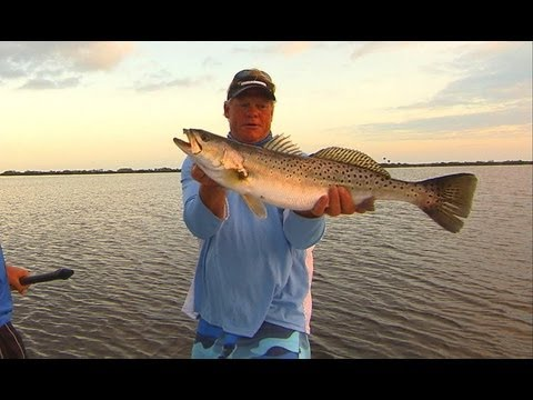 Big TROUT fishing on topwater plugs in Mosquito Lagoon Florida
