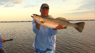 Topwater Speckled Trout Fishing on Mirrolure Top Dog Mosquito Lagoon