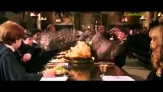 Гермиона и Драко - Голая правда