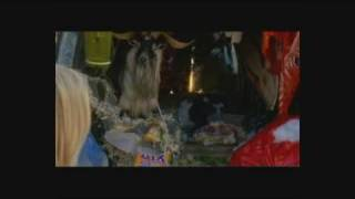 Video VERONICA MARS :-:-:-:  BOYS WANNA BE HER download MP3, 3GP, MP4, WEBM, AVI, FLV Januari 2018
