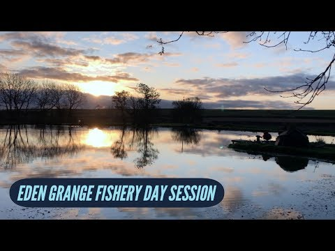 Eden Grange Fishery Shildon - Carp Fishing Day Session November 2019