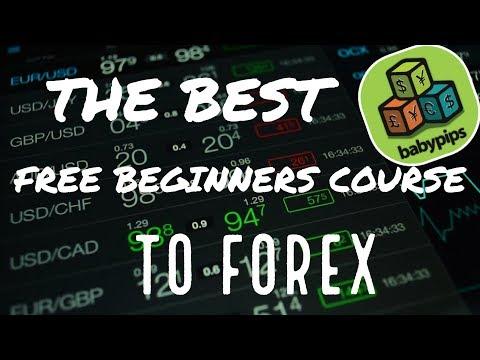 Free forex training micro pip baby