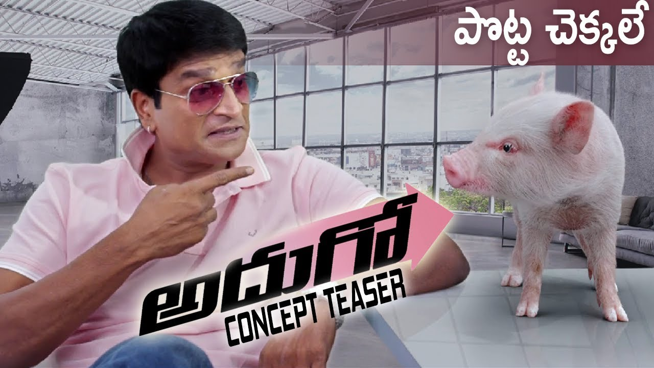 ravi-babu-directs-a-film-a-baby-pig-main-character