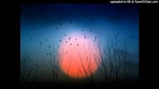 Dj Datch &  Kryss Hypnowave - Xenomorph (Original Mix)
