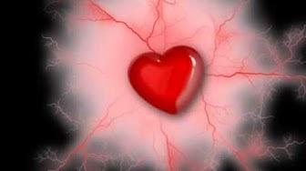 Bilder der Liebe