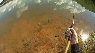 Рыбалка, ловля окуня на донку.