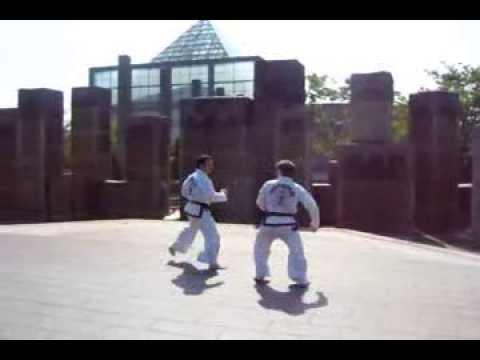 ITF Taekwon-Do in Osaka and Kyoto 2009