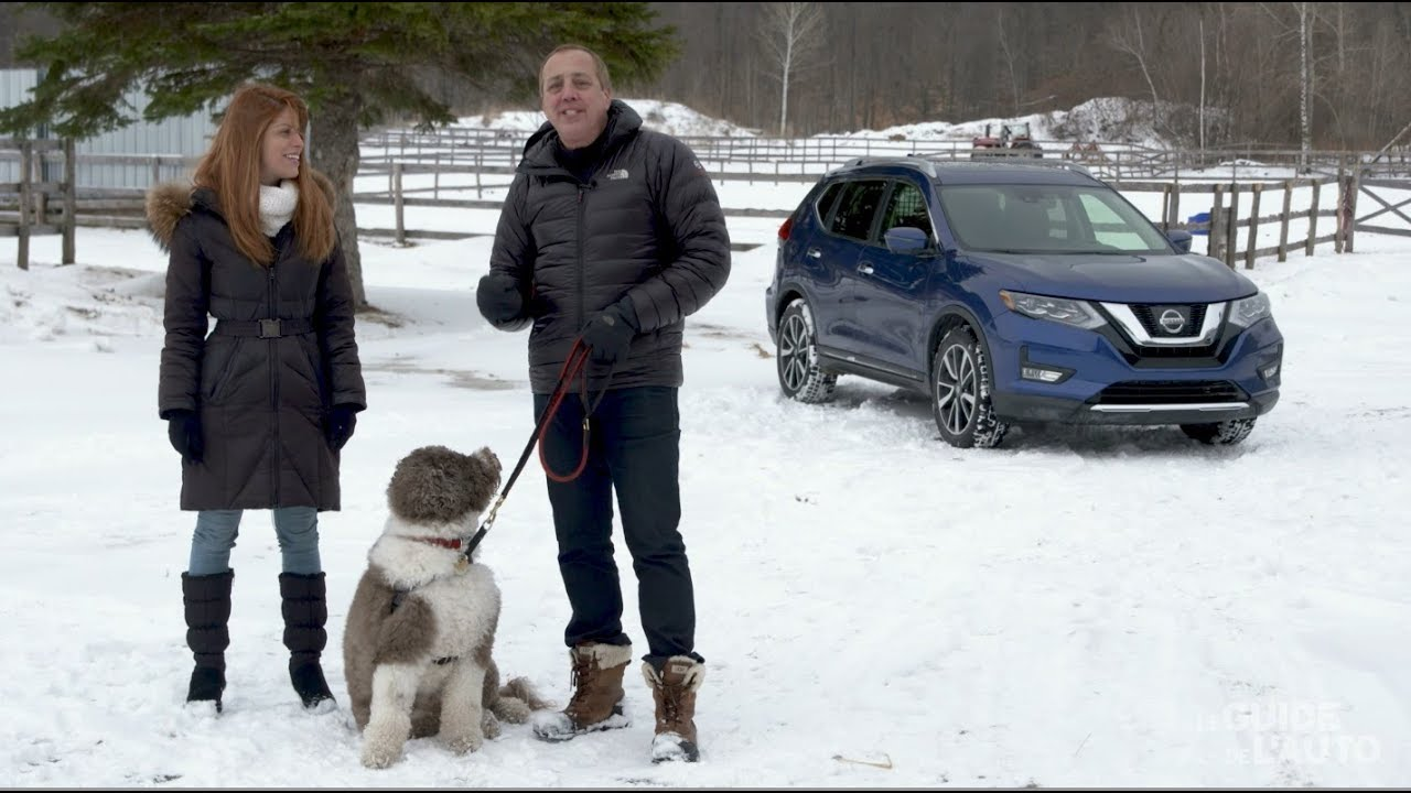 Nissan Rogue Dogue: an SUV Designed for Dogs! - YouTube