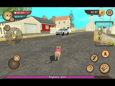 Cat Sim Online: Play with Cats Android Gameplay Ep 1