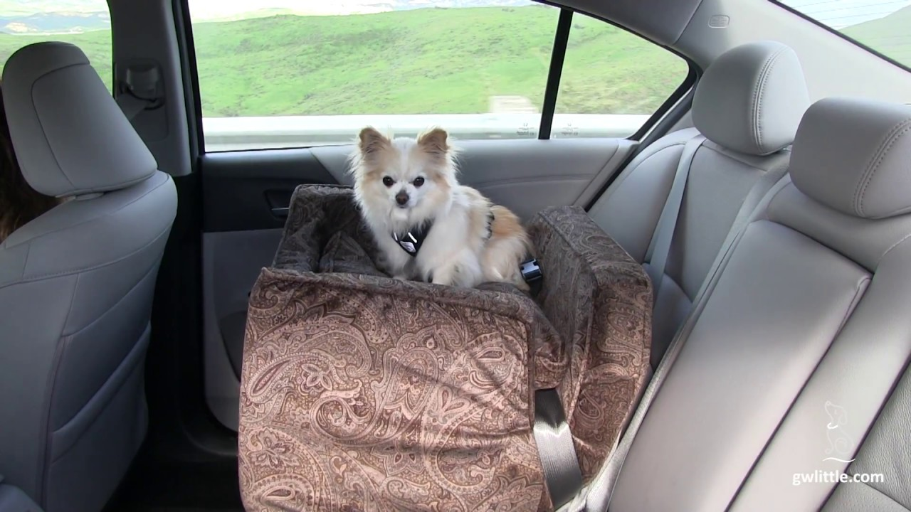 Dog Car Seat Medium Lookout By Snoozer Pet