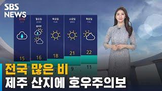 [날씨] 전국 많은 비…서울 20~60mm · 제주 1…
