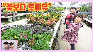 미니 유니가 봄꽃 구경하러 갔어요^^ 여러가지 봄꽃 구…