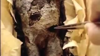 Tutanchamun - Das Geheimnis des Pharao