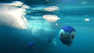Pokémon GO - 지금 깨어나는 광활한 세계로! 신오지방 포켓몬 등장!