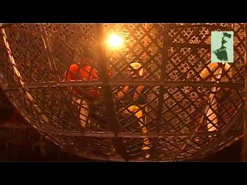 Globe-er Khela (গ্লোবের খেলা) | A Daredevil Motorbike Show | Olympic Circus