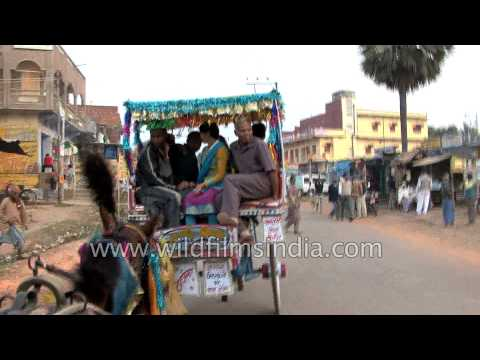 Tonga Ride In Rajgir, Bihar - Clip-clop Of Horse Hooves On Tarmac