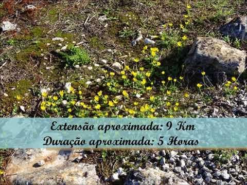 Calçada Romana de Alqueidão da Serra