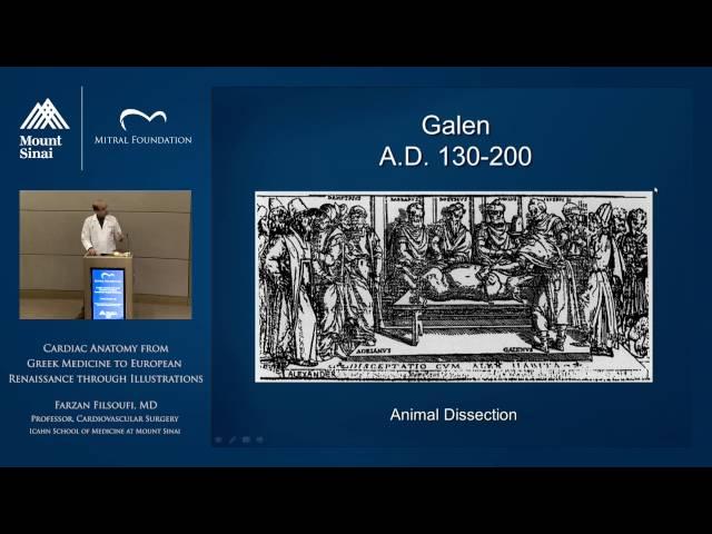 Cardiac Anatomy from Greek Medicine to European Renaissance through Illustrations