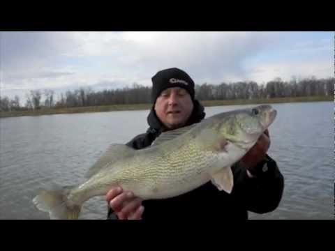 Blackwater cats red river walleye guide service lockport for Lake winnipeg fishing