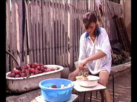 Munca copiilor in Republica Moldova. Combateti exploatarea muncii copiilor!