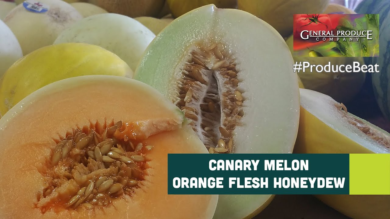 Canary & Orange Flesh Honeydew Melons | Produce Beat
