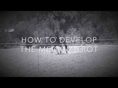 How To Develop The Medium Trot