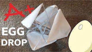 DIY First Place Winning Egg Drop