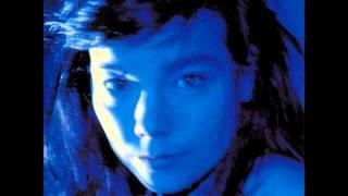 Björk - Hyperballad (Brodsky Quartet Version)