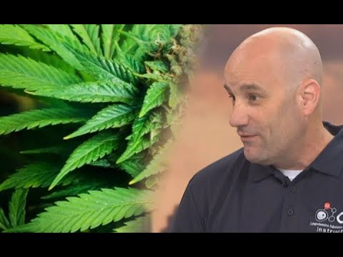 Would decriminalisation of cannabis stamp out NZ's black market?