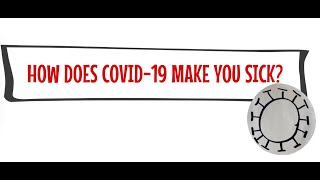 How does Covid 19 make you sick?