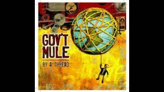 Gov't Mule - Gordon James
