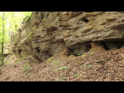 Geologische Orgeln in Schroffen (Unterneukirchen, Hirten, Oberschroffen, Wetzberg)