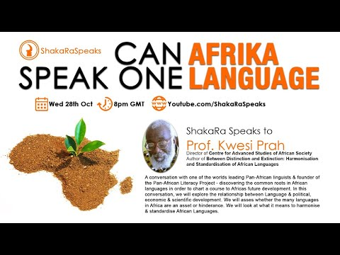 Can Afrika Speak One Language w/ Prof. Kwesi Prah