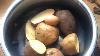 (98)Старинный способ селекционного отбора семенного картофеля.