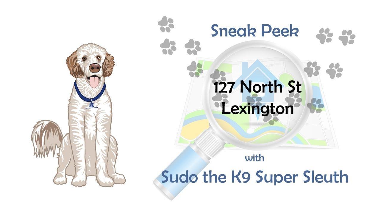 Sneak Peek 127 North St, Lexington