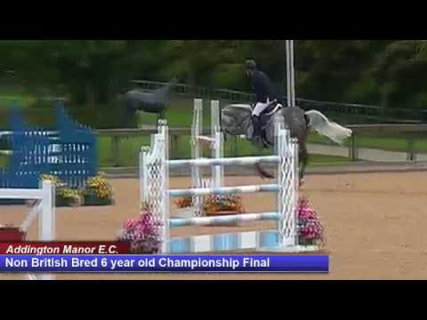 British Young Horse Showjumping Championships Non British 6YO Final - Sunday 20th August 2017