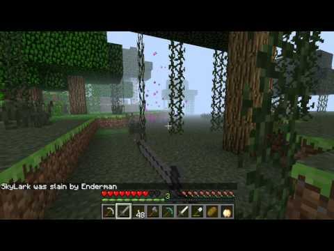 Minecraft co-op E3