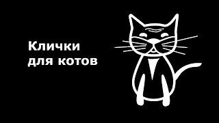 Клички, имена для котов. Как назвать кота.