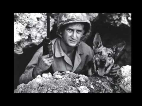 Kittens and Puppies of WWII ACHS