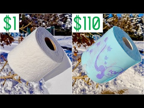 $1 Toilet Paper Vs. $110 Toilet Paper (Ripping Off BuzzFeed)