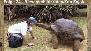 Folge 24 - Riesenschildkröten/Der größte Tierladen der Welt!