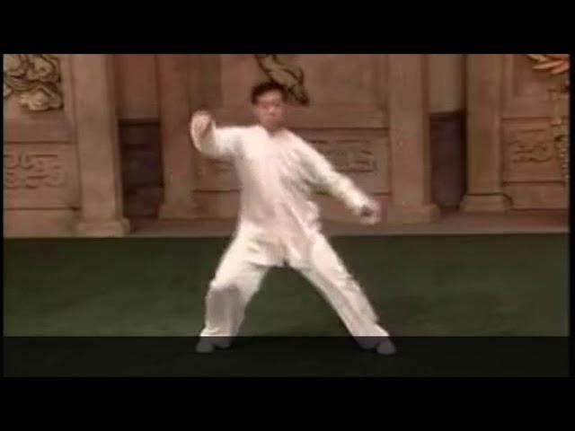 Chen Zheng Lei - Tai Chi style Chen Laojia Erlu Paochui [陈氏太极拳老架 Taijiquan style Chen]