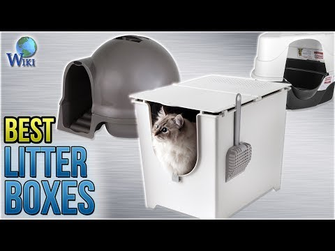 10 Best Litter Boxes 2018