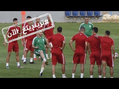 مباراة الجزائر والسنغال تشعل مواقع التواصل  - نشر قبل 6 ساعة