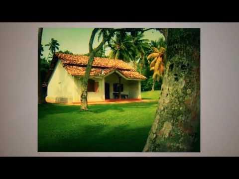 Martin Wickramasinghe - Sinhala Documentary| SLIITMetro2017