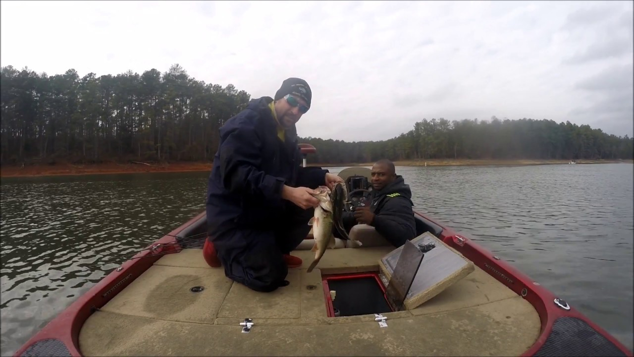 Bass fishing clarks hill prefishing f4r and club for Clarks hill lake fishing report
