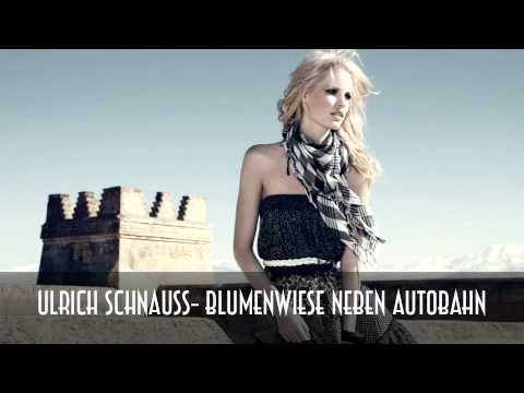 Ulrich Schnauss- Blumenwiese Neben Autobahn  [HD] mp3